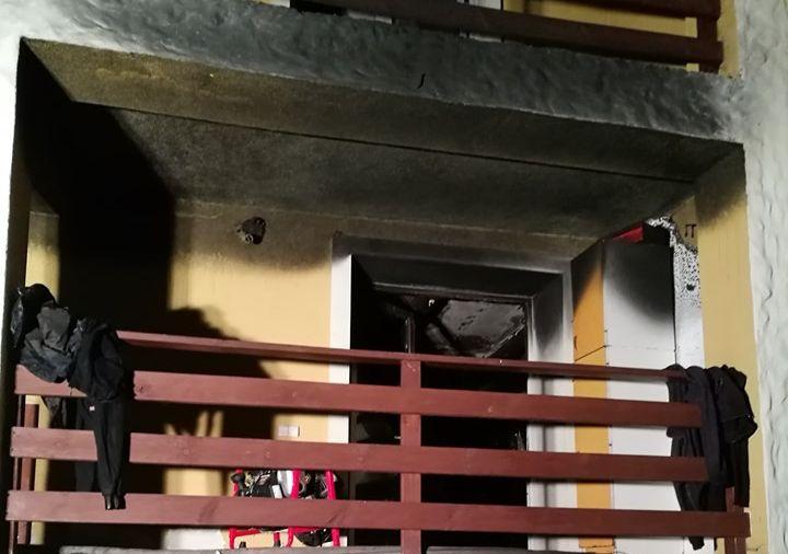 Pożar lodówki. Strażacy ewakuowali kocią rodzinę