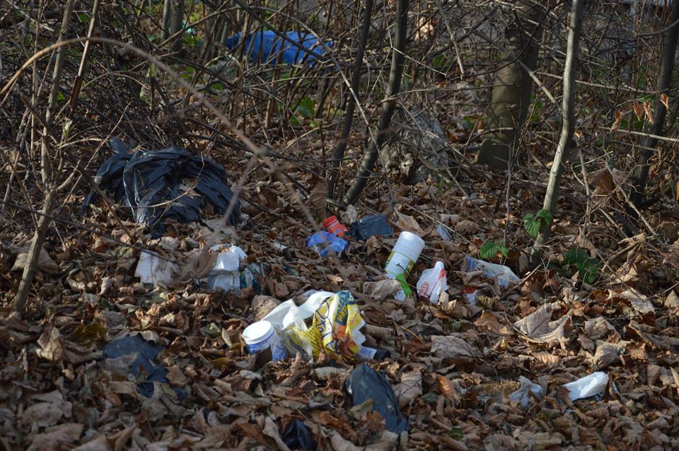 Liście opadły, śmieci zostały. Smutny obraz naszych lasów.
