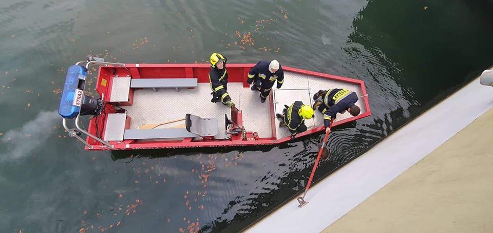 Interwencja strażaków na jeziorze. Wyłowili martwego dzika