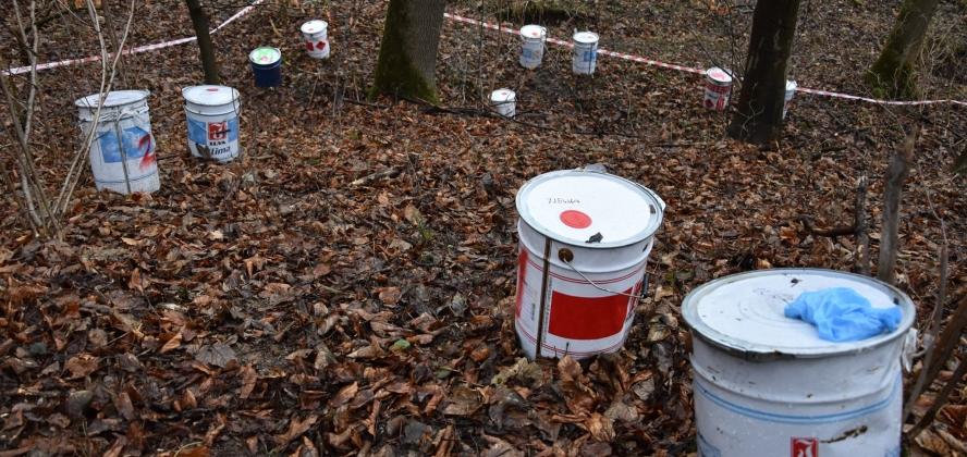 W lesie znaleziono porzucone beczki z nieznaną substancją