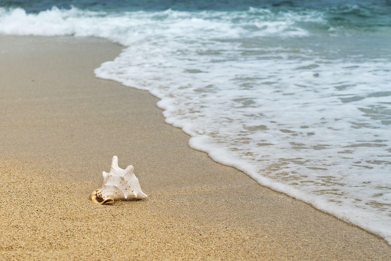 Jak zrezygnować z wykupionych wakacji? Mnóstwo pytań do rzecznika konsumentów