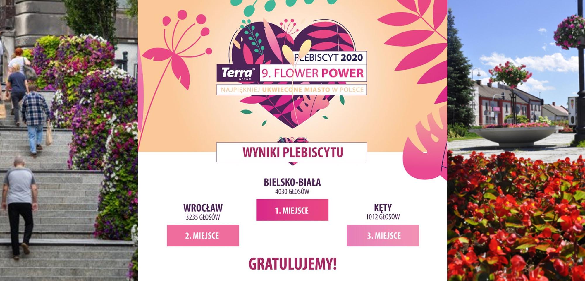 Bielsko-Biała najpiękniej ukwieconym miastem Polski
