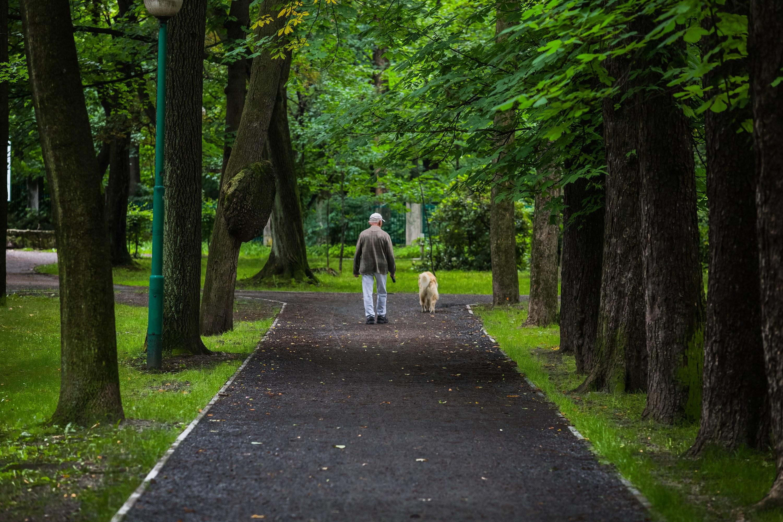 Bielsko-Biała w czołówce najbardziej zielonych miast w Polsce